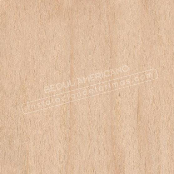 Foto de madera de abedul americano