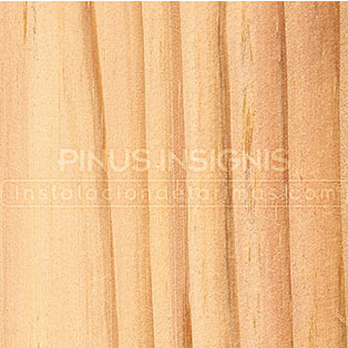 madera de pino insignis o pinus radiatamadera de pino insignis o pinus radiata