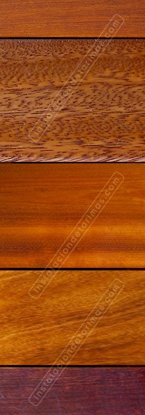 foto de madera tropical