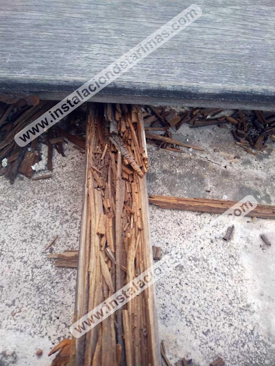 Foto de rastrel de pino autoclave totalmente podrido en una instalación de exterior